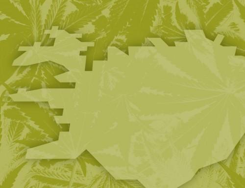 Kannabis á Íslandi