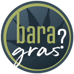 baragras.is Logo